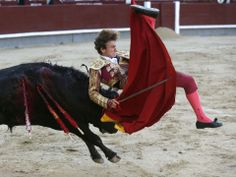 Apprentice bullfighter Roman Collado is gored by his first bull at the San Isidro Fair on May 12 in Madrid, Spain.