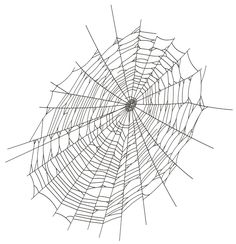 Halloween Large Spider Web PNG Clipart