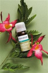Quality Clary Sage Ethically Harvested Essential Oil from Tisserand