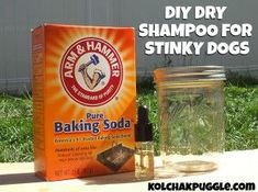 Dealing with a stinky pup is no fun and you can't be bathing them all the time. This DIY Dry Dog Shampoo is a totally naturally, cheap and easy solution.