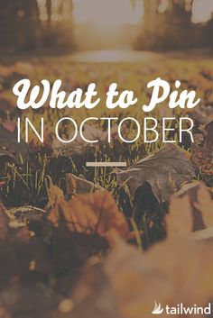 What to Pin in October by category. Featuring the most Popular Pins on Pinterest from October 2015.