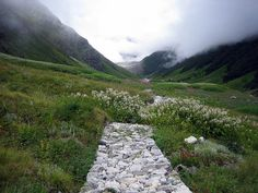 Valley of Flowers - National Park in India - new post on my LAB Landscape Architect Blog