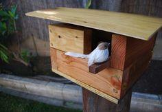 DIY Birdhouse - Mod Pod