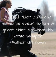 In the end, we're all horse whisperers.