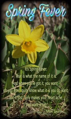 First Day of Spring! This Spring Quote from Mark Twain is my absolute favorite! It