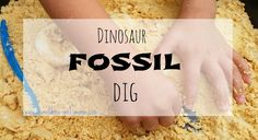Munchkins and Moms: Dinosaur Fossil Dig