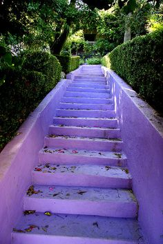 Purple stairs  OMG! LOVE!