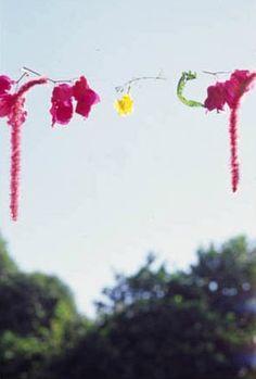 Mark Borthwick, Contemporary Photography, Bloom, Spring, Inspiration, Board, Girls, Nature, Life