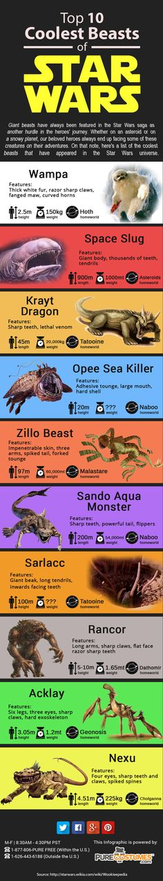 Top 10 Coolest Beasts from the STAR WARS Universe - Infographic