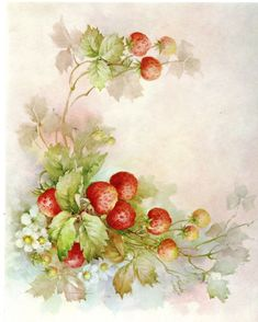 #31 Strawberries China Painting Study by Sonie Ames 1969 Tole Painting Patterns, Unalome, Still Life Photos, China Painting, Fruit Art, Paper Design, Floral Wreath, Projects To Try, Strawberry