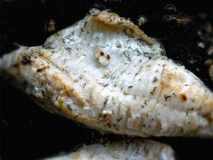 Persico al vapore | Cucinare Meglio