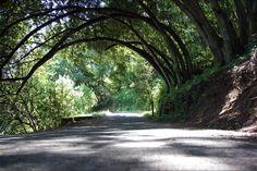 Castro Valley, California