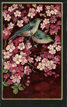 Bluebirds with cherry blossoms vintage postcard