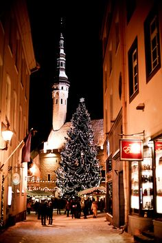 Christmas in Tallinn, #Estonia. Would you like to #register a #company in Estonia? http://www.lawyersestonia.com/the-trade-register-in-estonia