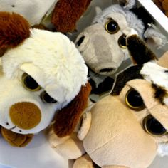Famosa Softies, a line of high - quality soft toys. Soft toys perfect for people of all ages. Softies, Hug Me, Plush, Teddy Bear, Toys, Character, Animals, Plushies, Celebrity