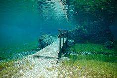 http://find-travel.jp/article/2876/3 26.グリーンレイク(オーストリア) 雪解け水がどんどんたまり、半年間だけ湖に変わる「グリーンレイク」。そのため、湖の中に草原が広がり、ベンチまであるというおとぎ話のような不思議な世界観が広がるスポットです。草原をダイビングって貴重な体験ですね。