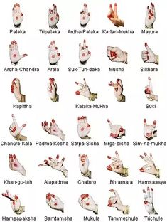 Risultati immagini per mudras en español 7 Chakras Meditation, Kundalini Yoga, Reiki, Ayurveda, Kathak Dance, Hand Mudras, Indian Classical Dance, Dance Pictures, Sign Language
