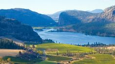 San Francisco Magazine   Modern Luxury   Canada's Okanagan Valley is the Best Wine Destination You've Never Heard of