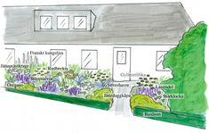 Entréträdgård Sommaräng - perenner.se Semester, Outdoor Spaces, Pergola, Decorative Boxes, Gardens, Lavender, Outdoor Living Spaces, Outdoor Pergola, Outdoor Gardens