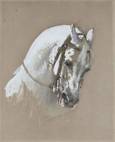 Isidore-Alexandre-Augustin Pils - The head of a white horse