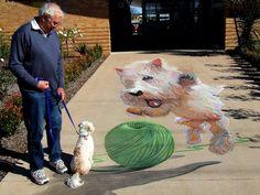 chalk art dog Jumpers and Jazz, QLD by Rudy Kistler Amazing Street Art, 3d Street Art, Amazing Art, Graffiti Art, 3d Chalk Art, Art 3d, Pavement Art, Urbane Kunst, Sidewalk Chalk Art