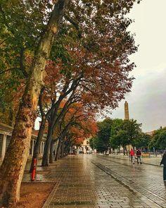 Осень в Стамбуле так и наступила! Очаровательное зрелище повсюду золотистые листья и необычайная красота! Country Roads