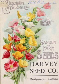 Illustrated front cover of Harvey Seed Co, Garden and Farm Seeds catalogue 1908. Harvey Seed Co, Montgomery, Alabama.U.S. Department of Agriculture, National Agricultural Library  Biodiversity Heritage Libraryarchive.org