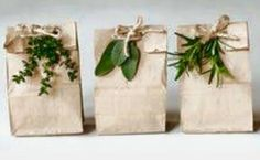 Favour bags jungle woodlands birthday event