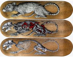 "ROA ""Decay"" Skateboard Decks"