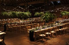A lush and bountiful greenery canopy suspended over beautiful table scapes. The tables were dressed with taper candles, brass candle sticks, bud vases, greenery and fruit. We loved this! Wedding Flowers, Wedding Day, Narcissus Flower, Candle Sticks, Wedding Decorations, Table Decorations, Table Scapes, Taper Candles, Bud Vases