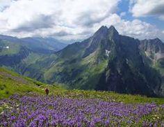 Die Höfats (2.259 m) bei Oberstdorf trennt das Oytal vom Dietersbachtal und ist der markanteste Allg... - Hans-Peter Merten /Getty Images
