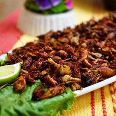 What's mole without crickets? #feriadelosmoles2016 #mole #mexicancuisine