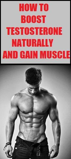 If you want to gain muscle, get a stronger libido and be healthy you should read how to boost testosterone naturally. Best Weight Loss Foods, Healthy Weight Loss, Weight Loss Tips, Losing Weight, What's My Body Type, Body Types, Monthly Workout Plans, Weight Loss Calculator, Boost Testosterone