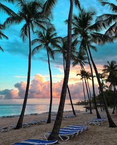 Sunset in Punta Cana - Dominican Republic. Photo by @asenseofhuber