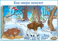 Poster na temo, kako živali zimske Winter Crafts For Kids, Kids Poster, Forest Animals, Science And Nature, Animals For Kids, Winter Time, In Kindergarten, Pre School, Toddler Activities