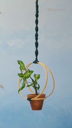 Macrame Plant Holder, Macrame Plant Hangers, Plant Holders, Diy Hanging Planter, Diy Planters, Hanging Pots, House Plants Decor, Plant Decor, Diy Plant Stand