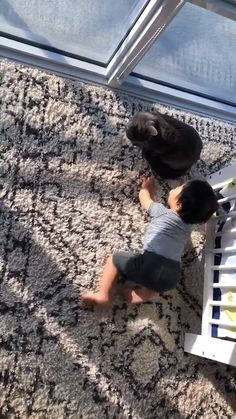 Cute baby and cat – Cute Cat Videos – Funny Videos Cute Funny Baby Videos, Cute Funny Babies, Cute Baby Boy, Cute Baby Pictures, Cute Little Baby, Funny Animal Videos, Animal Memes, Cute Kids, Funny Animals