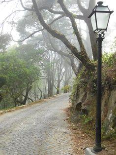 ...caminhos de Sintra