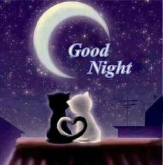 Heart Tails Good night time for me to go to bed. Good Night Sleep Well, Night Love, Good Night Moon, Good Morning Good Night, Day For Night, Good Night Greetings, Good Night Messages, Good Night Wishes, Good Night Sweet Dreams