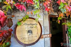 A cycling winery tour of Mudgee with kids | NSW Tales
