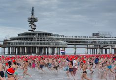 Nieuwjaarsduik - Dutch tradition: have a swim in the sea on January 1st, every year.