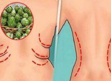ce miros te face să slăbești pierderea în greutate cât durează