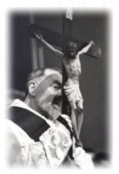 Happy 50th, Saint Quotes, Pray For Us, Patron Saints, Blessed, Faith, Terra, Concert, Grande