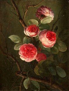 Danish. 19 th century.Pink Rosebush.artist unknown.