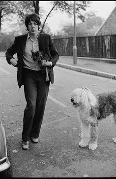 The Beatles featuring Paul McCartney George Harrison John Lennon and Ringo Starr John Lennon, Rock N Roll, Martha My Dear, My Love Paul Mccartney, Old English Sheepdog Puppy, Sheep Dog Puppy, Les Beatles, Sir Paul, The Fab Four