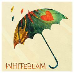 Whitebeam - album packaging & illustration by Steve Simpson