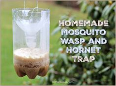 The process of making a homemade mosquito trap is much the same as a homemade wasp trap, the only difference is the bait. We show you how to make both!