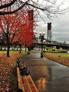 Waterfront park, Portland Oregon in fall #Autumn #Rain #City