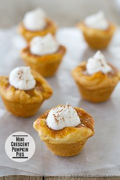 Mini Crescent Pumpkin Pies- These mini pumpkin pies are the perfect holiday recipe – serve them as a sweet appetizer or as a sweet ending to a holiday meal. Just Desserts, Delicious Desserts, Dessert Recipes, Yummy Food, Luncheon Recipes, Fall Desserts, Cupcake Recipes, Dessert Ideas, Pumpkin Recipes