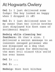 Hoot hoot bitches. Hedwig really was a tough bird. She lasted 6 years of danger and it took the actual killing curse to bring her down.